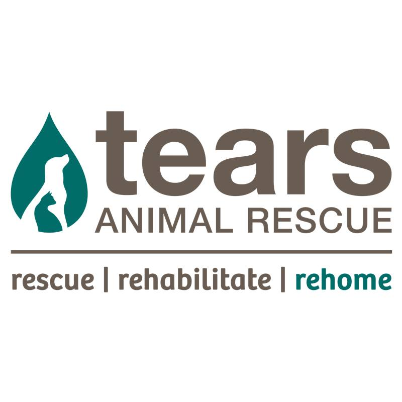 TEARS Animal Rescue Christmas Cake Raffle