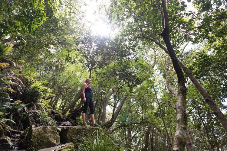 Leisurely rambles to invigorating hikes, something for everyone!